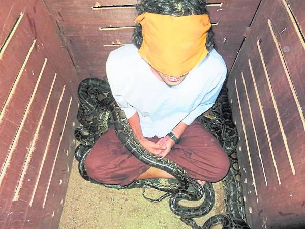 打坐时,大蛇咬伤阿当的腿,似乎在考验他的意志。
