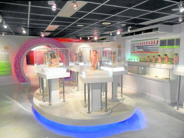 """泰国这间""""死亡博物馆"""",专门展示各种死亡状态的人体干尸,如果不够大胆,最好不要冒然尝试了……"""