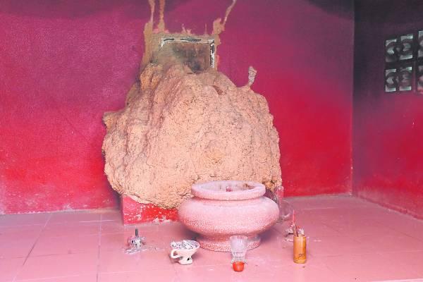 原本拿督公神龕內供奉著3尊拿督公金身,但一夜间被白蚁筑窝包围,实在神奇。