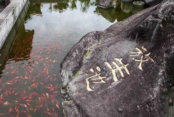 放生池的意义重大,因为它不仅仅是一个放生鱼的池子,更重要的他是一种激发众生慈悲心的手段。可是,并非每间庙宇都适合筑建放生池,尤其尺寸格局不对,分分钟招引凶煞。