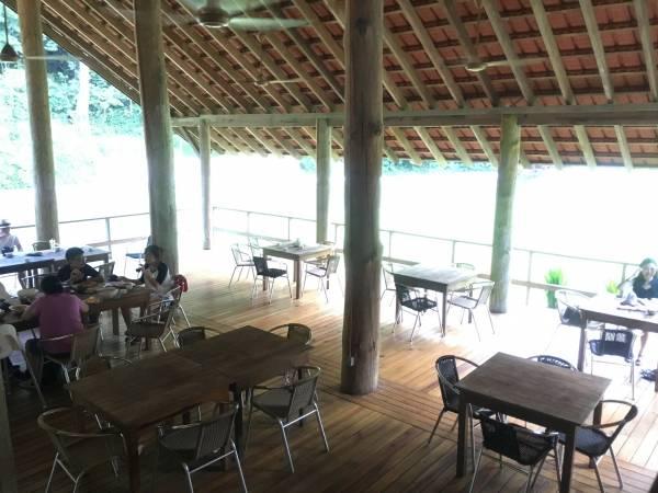 山中茶原并不多人知道,我们抵达后在宁静环境中品尝料理,甚是悠闲。