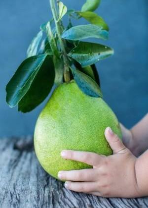 传统上,柚叶需要煲至散出清香之味才可使用。