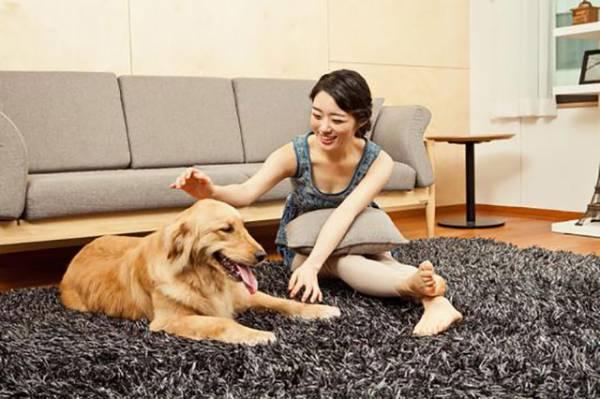 家中饲养宠物虽可增添生气,但如果照顾不周,可会招来无形煞。