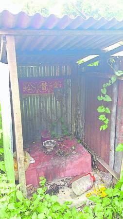 树林深处的小神龛,是否是古墓主人的最后安息之地?