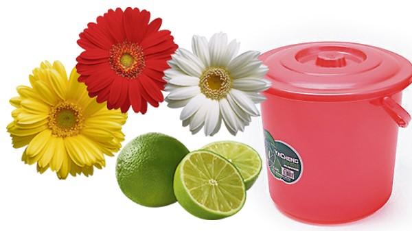 准备三色花朵、酸柑和干净的小桶水,等到祭祀完后洒在坟堆上或明堂,比放鞭炮更有意义。