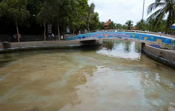 这个肮脏的人造池,成了公众的许愿池。