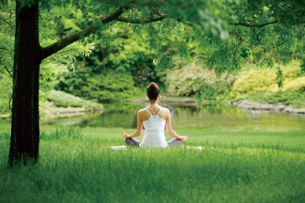 想要磁场佳,运势好,不妨到深山打坐与天地灵气融为一体,增加体内灵力。