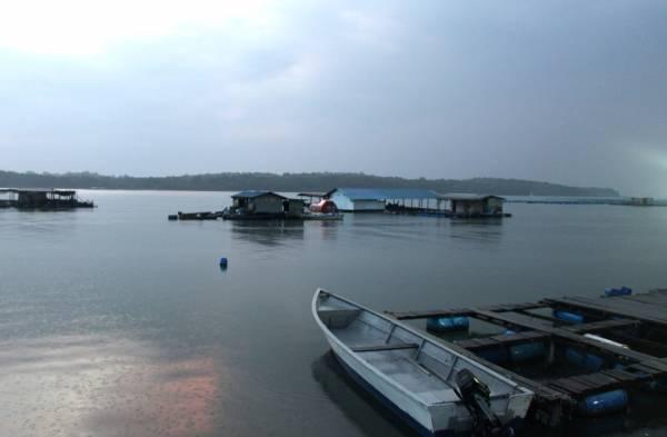 海番村岸边,可远眺海上的渔排,旅舍和渔船。