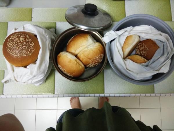 回到家后我将面包分类处理:(右起)储存在电饭锅内胆,放在室温,最好在两三天内吃完;放在汤锅里,送进冰箱的冷藏,一个礼拜内吃完;放进布袋,冷冻起来,一个月内吃完。