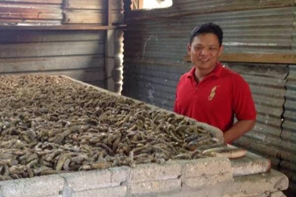 林成荣表示,国内海参加工业者不多,兴楼即是其中之一。