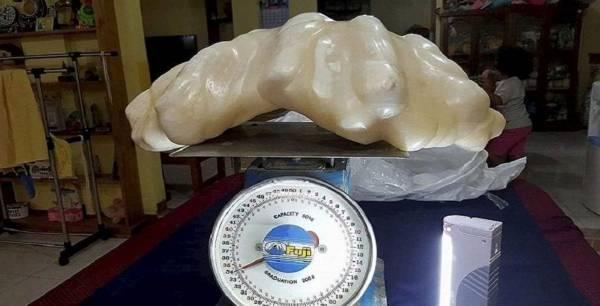 """公主港之珠""""重达34公斤,有望成为世界上最大的天然珍珠,同时也是迄今最长的珍珠"""