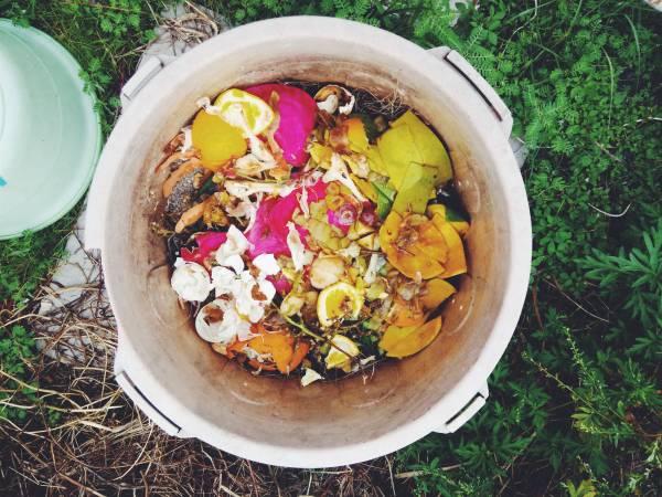 素食不仅更健康,也更容易零垃圾,因为一般堆肥箱是不能丢入肉类和骨头的。