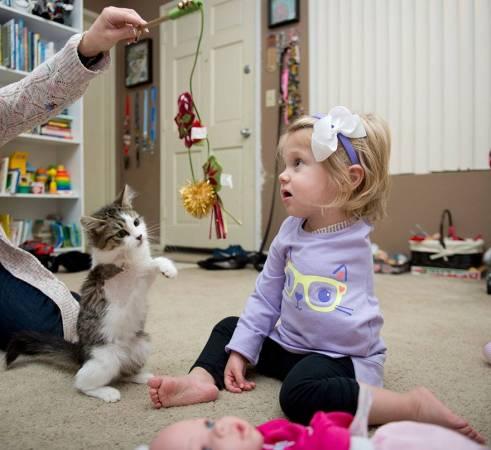 Scarlette的妈妈不希望Tipton孤独的长大,希望她有一个相似的事物陪伴她。