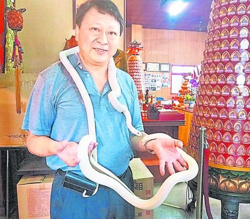 台湾唯一供奉白娘娘白素贞的杨梅白蛇庙,最大威水史就是有许多政商名流,甚至知名歌手也来抢拜加持,原来,除了拜白蛇祈福,另外还有两宝坐镇。