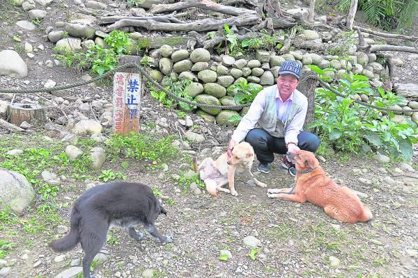 """郭叔叔饲养了4只牧""""猴""""犬,主要是监督偷吃水果的猕猴。"""