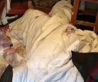 尸体用白色被盖著。