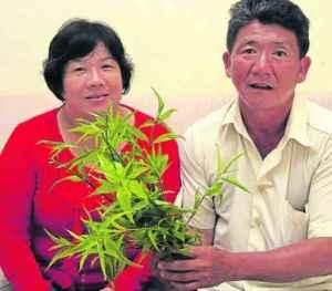 淋巴癌患刘联辉食用忧遁草后奇迹康复,现在两夫妻对忧遁草视如珍宝。