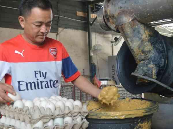 腌制步骤2:将鸭蛋均匀沾上黄泥。