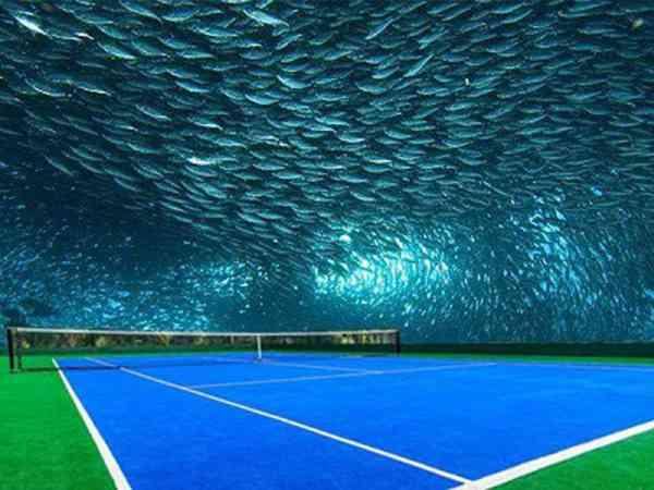 抬头一看,不是蓝天,而是成群的鱼儿,最炫的海底球场,你看过吗?