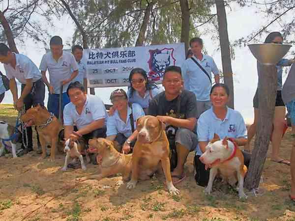 比特犬俱乐部积极于办宠物聚会和旅行团,就吸引了不少会员携狗参与。