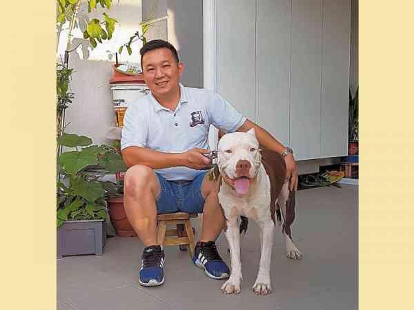 李松鑫对比特犬情有独钟,并于2013年创立了比特犬俱乐部。