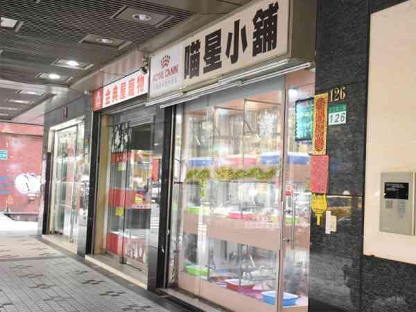 """台湾的光復南路堪称为""""宠物街"""",只要有关于宠物的都能找得到!"""