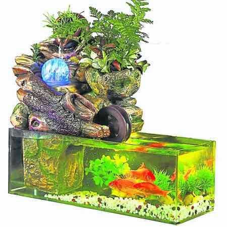 虽然鱼缸是有好的喻意,但如果摆放的方位不对,也会对家居风水造成不好的影响,因此需要慎重。