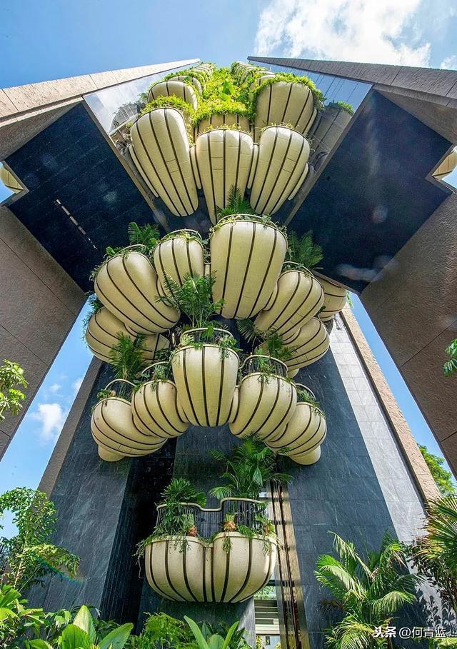 新加坡EDEN/Thomas Heatherwick设计。