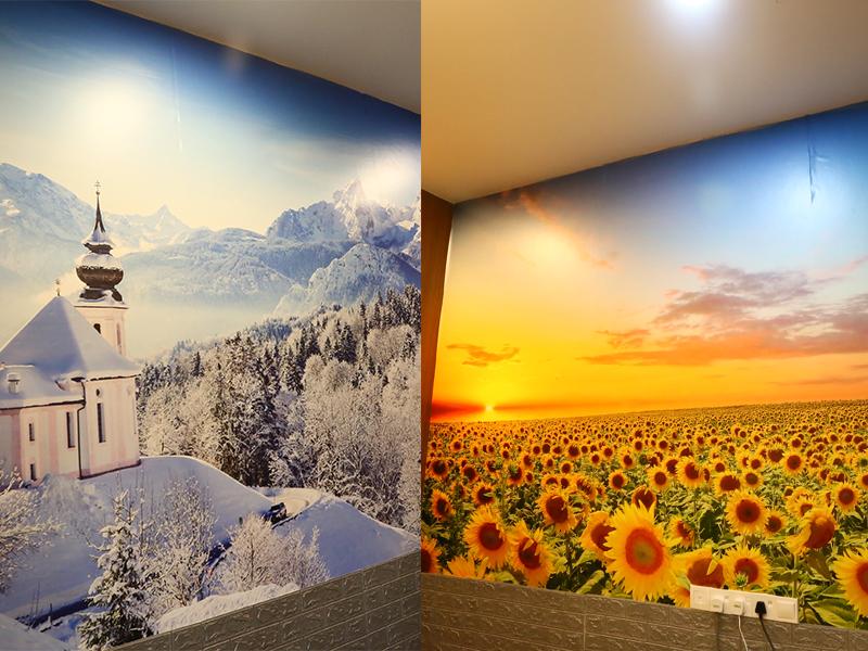包厢内两幅向日葵墙贴和雪山墙贴,张导师却指这两幅墙贴都触犯了风水禁忌。