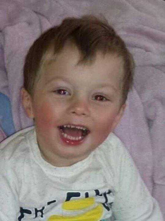 Ollie患有脑白质病变,大部分时光都是在医院度过的。