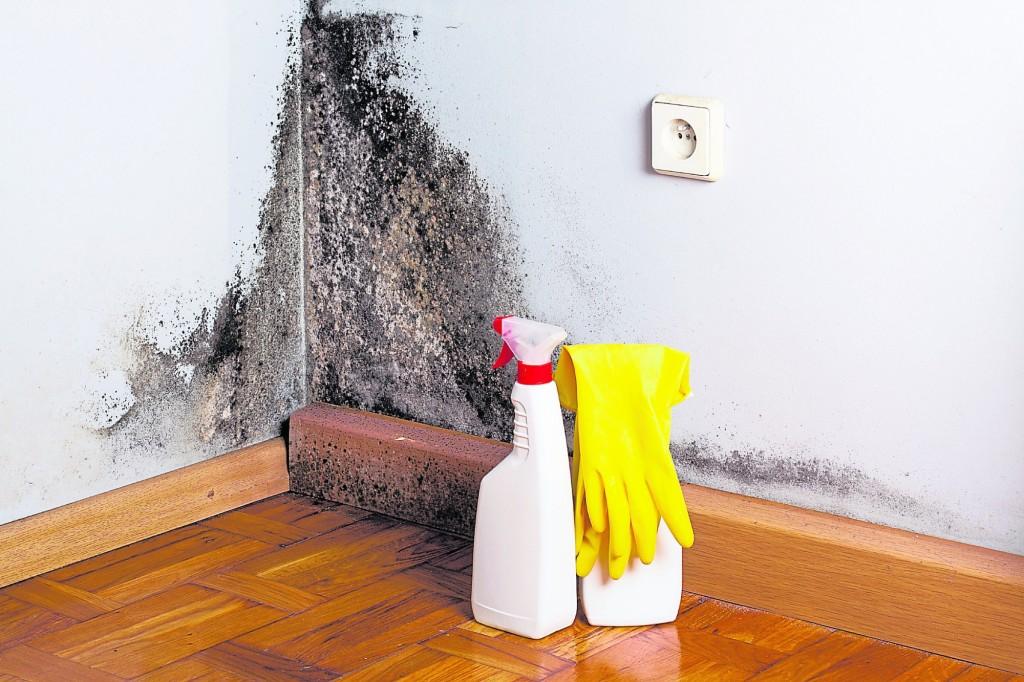 霉菌肆虐的浴室,代表居家湿气过重,久而久之对人体健康造成危害,也会影响财运。