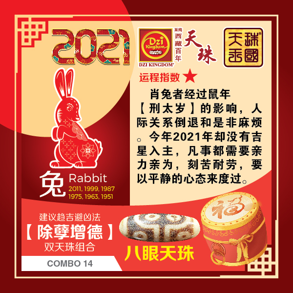 4_Rabbit