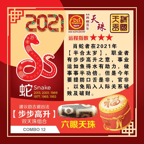 6_Snake