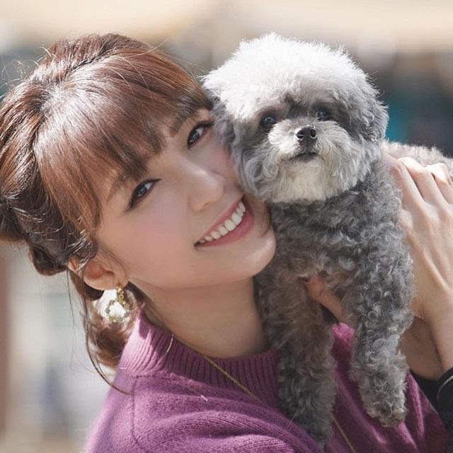 孙慧雪在怀孕前已经养有3只狗狗。