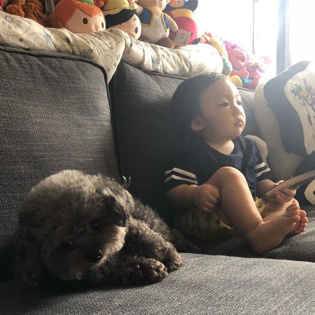 孙慧雪的狗狗跟孩子相处得不错。