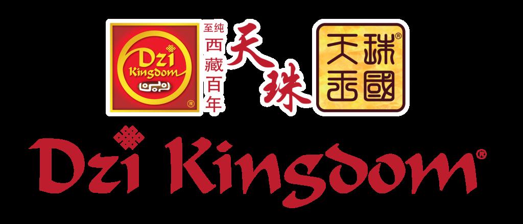 Dzi Kingdom Logo New